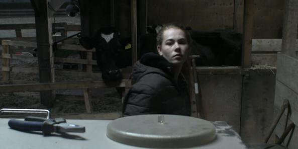 Naomi verzorgt koeien