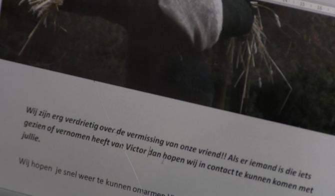 Het mysterie van de vogelverschrikker Victor